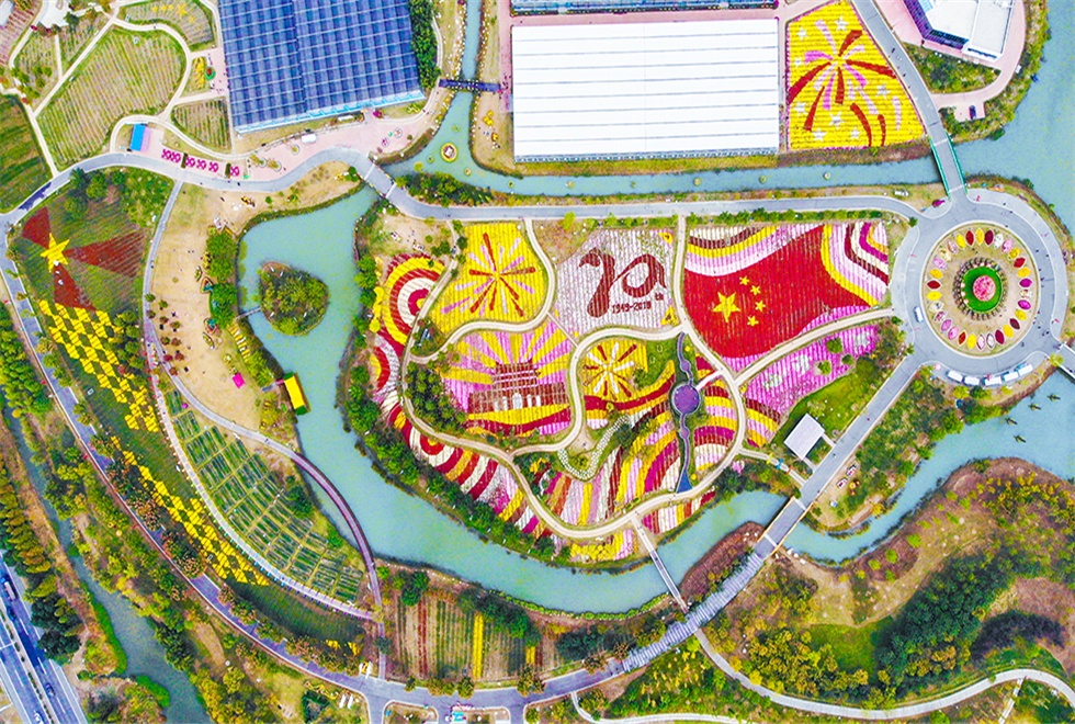 亚博网app下载白马湖·菊花展