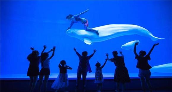 龙宫大白鲸世界