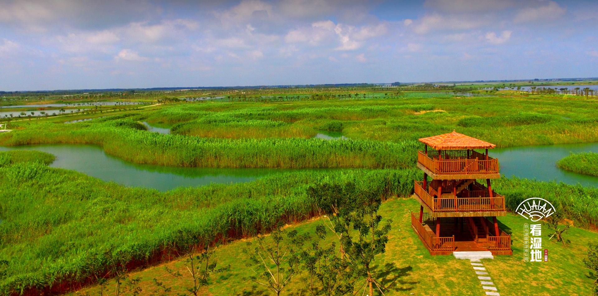 古淮河湿地公园